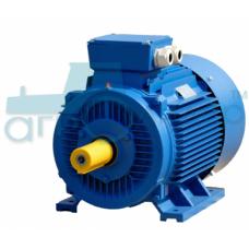 Электродвигатель трёхфазный 18,5 кВт 3000 об/мин (рем)