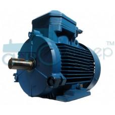 Электродвигатель трехфазный 4,0 кВт 1500 об/мин (рем)