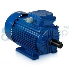 Асинхронный электродвигатель АИР 160 M6  15,0 кВт 1000 об/мин